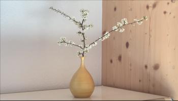 Goldene Vase